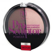 Хайлайтер-пудра TF Cosmetics Pro Sculptor № 02 medium