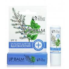 Бальзам для губ Colour Intense Healthy Therapy Lip Balm відновлюючий Мята і Ялівець 5 г